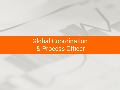 global_coordination_process_officer